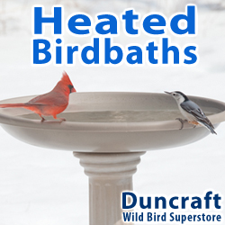 Shop Our Wide Selection of Heated Birdbaths