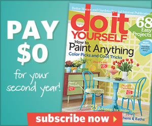 Do It Yourself Magazine (Print)