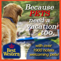 pet friendly hotels, Best Western - Pets need a vacation Too