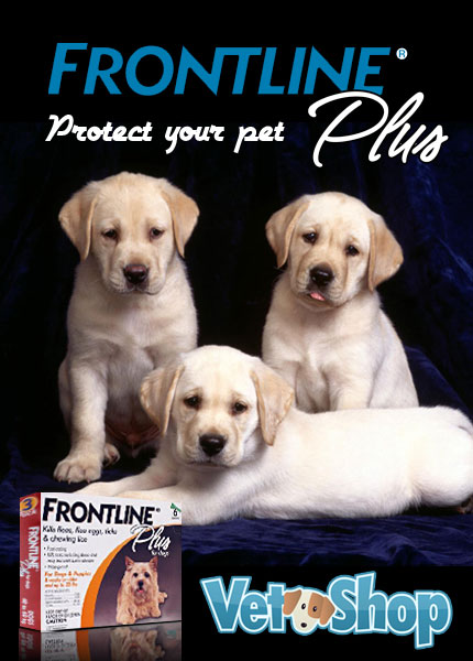 Frontline Plus - Pet Medication