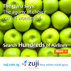 zuji.com.sg flights destination link
