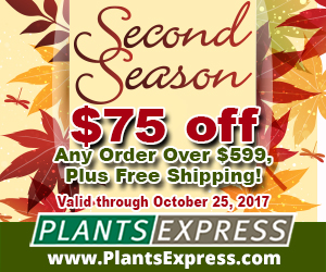Second Season from Plants Express