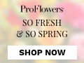 Flowers & Gifts for all occasions from only $19.99 at ProFlowers