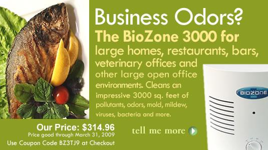 Biozone 3000 Air Purifier
