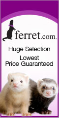 Get Everyday Low Shipping at Ferret.com