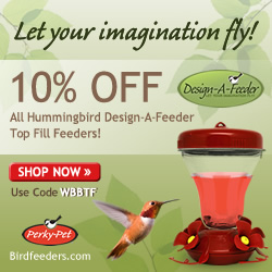 BirdFeeders.com - Shop Now!