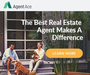 Agent Ace 300x250_2