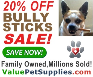 Bully Stick Sale - 20% OFF+Free Shipping! 300x250