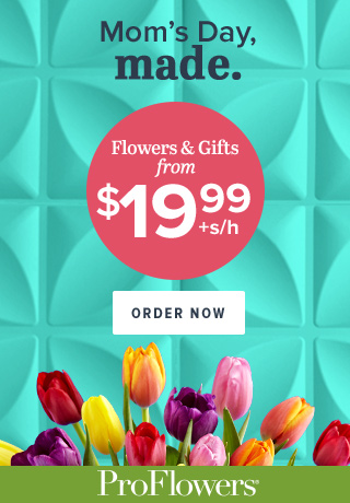 Flowers & Gifts for Mom from only $19.99 at ProFlowers