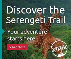 Discover the Serengeti Trail 300x250