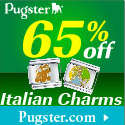 65% Off Italian Charms