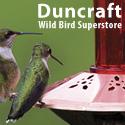 Shop Over 150 Hummingbird Feeders!