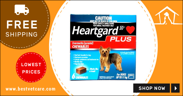 Online Heartgard For Dogs