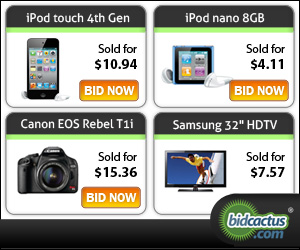 Wholesale Discounts at BidCactus