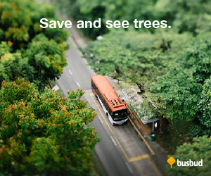 Save and See the Trees at Busbud.com!