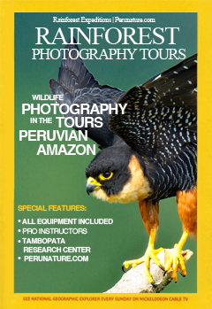 Nature Photography Tours