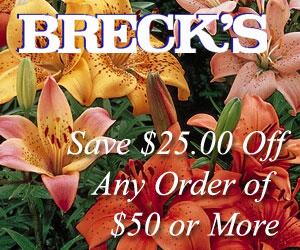 Save $25.00 at Brecks.com Today!
