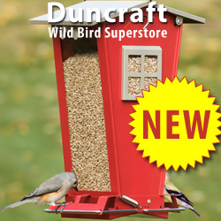Shop Our Duncraft Wild Bird Superstore and Discover Exciting New Arrivals for Spring!