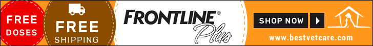 Online Frontline Plus