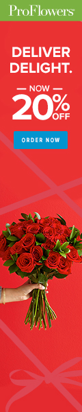 20% off Valentine's Day Flowers & Gifts at ProFlowers (min $29) - 120 x 600
