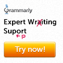 Expert Writing Support