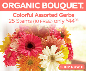 Eco-Elegant Mother's Day Flowers and Gifts