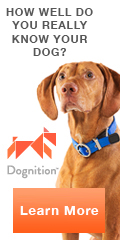 Dognition.com - How well do you know your pet?