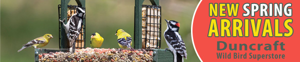 Shop Duncraft Wildbird Superstore Now for New Spring Backyard Birding Arrivals!