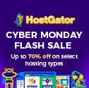 Cyber Monday Flash