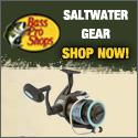Saltwater - 125x125