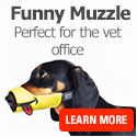 Available in three cute designs, these muzzles will invite positive energy to you and your dog