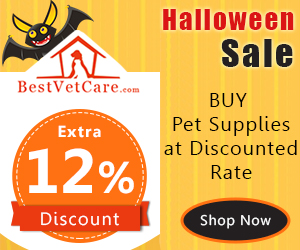 Buy Pet Supplies at Discounted Rate + 12% Extra Discount & Free Shipping