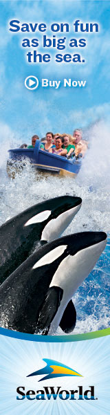 SeaWorld - Save on fun as big as the sea.