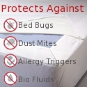 Best bed bug mattress cover for bedbug infestation