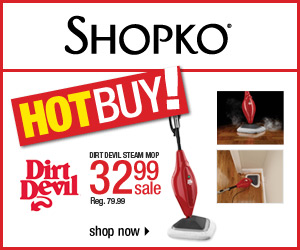 dirt devil steam mop