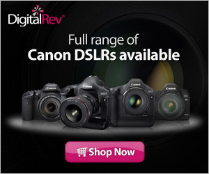 Full range of Canon DSLRs