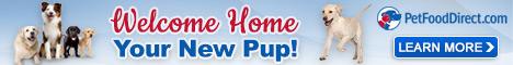 New Dog PFD 468x60