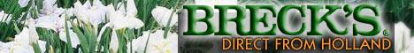 Breck's Dutch Bulbs Since 1818