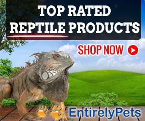 EntirelyPets Reptile Store