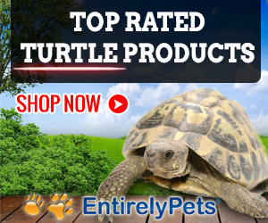 EntirelyPets Turtle Store