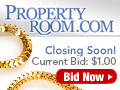 Property Room Gold Chain