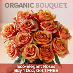 ROSE SALE BOGO!