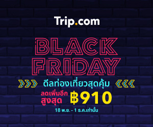 Black Friday Travel Sale! Save Big on Flights, Hotels, Trains, Tours & Tickets, and Car Rental!