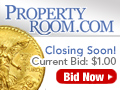 Property Room Gold Coin 120x90