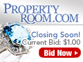 Property Room Ring 120x90
