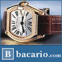 Bacario.com, Your #1 source for brand name Watches