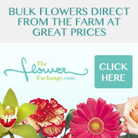 Bulk Flowers at great prices!