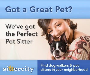 Find the perfect pet sitter at Sittercity.com