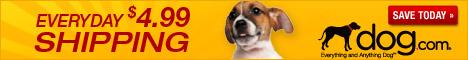 DOG.com Monthly Special