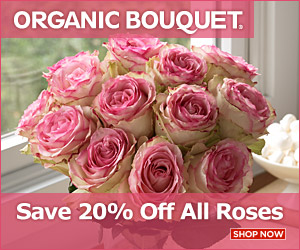 Fresh Valentines Day flowers at OrganicBouquet.com